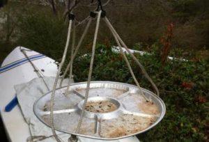 Bird Feeder Pan