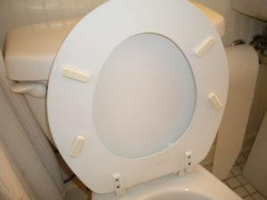 Idea .090111 Toilet Seat Supports