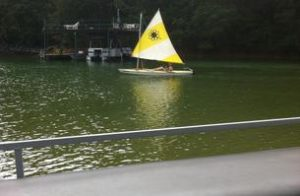 Sunfish With Smaller Sail Rig 1